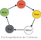 la loi d'engendrement des 5 éléments