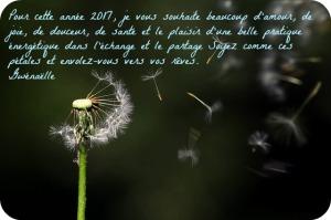 voeux_2017