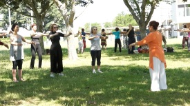 Les 20 mouvements essentiels du Qi Gong